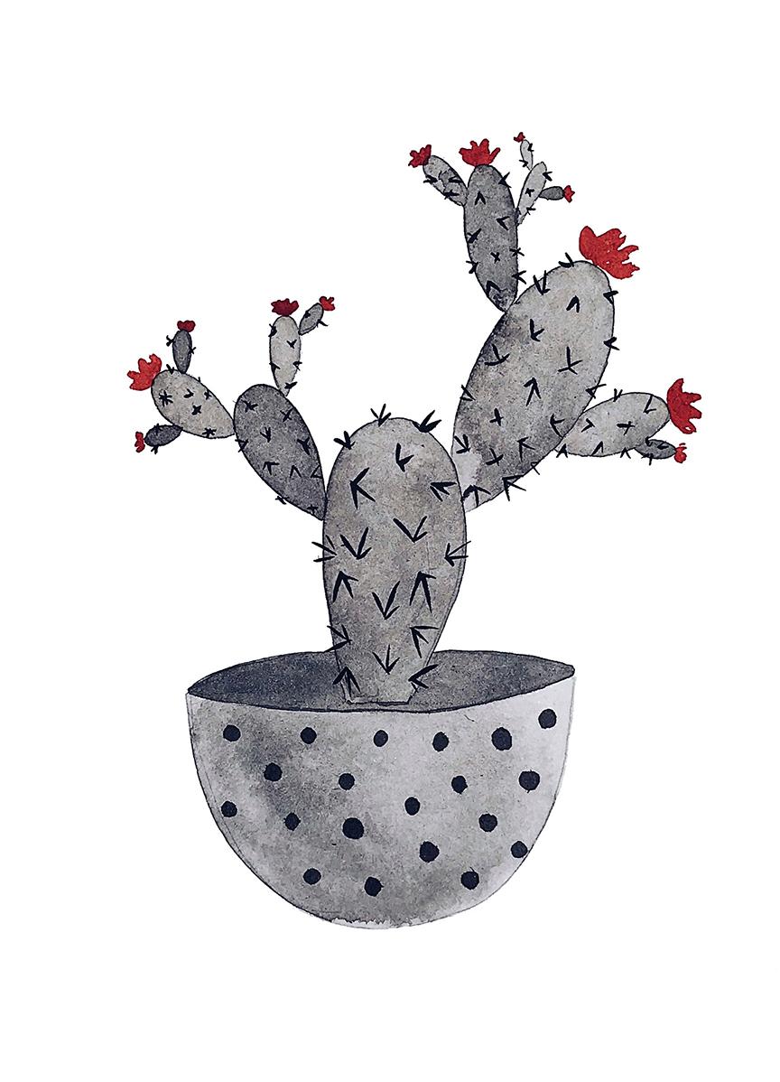 claudiaiarca_inktober_cactus